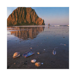 Morro Rock Reflecting In Wet Sand Gallery Wrapped Canvas