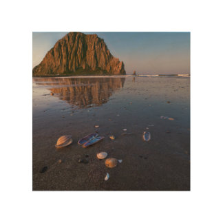 Morro Rock Reflecting In Wet Sand Wood Canvases
