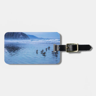 Morro Rocks at Dusk Tag For Bags