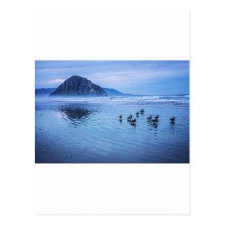 Morro Rocks at Dusk Postcard