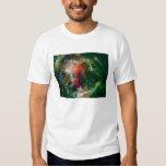 Mosaic is of the Soul Nebula Tees