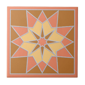 Mosaic pattern ceramic tiles