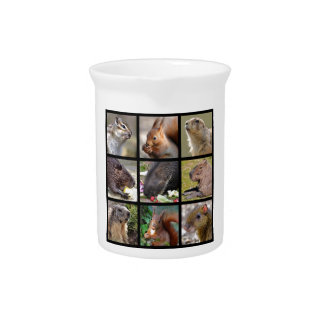 Mosaic photos of rodents beverage pitchers