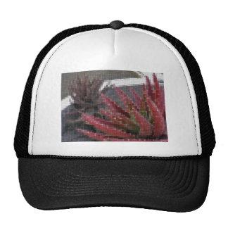 Mosaic Red-Green Aloe 3 Mesh Hat