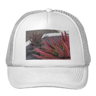 Mosaic Red-Green Aloe 3 Mesh Hats