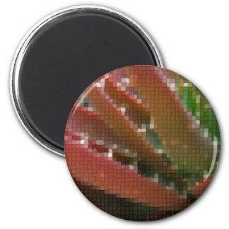 Mosaic Red-Green Aloe 4 6 Cm Round Magnet