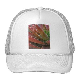 Mosaic Red-Green Aloe 4 Mesh Hats