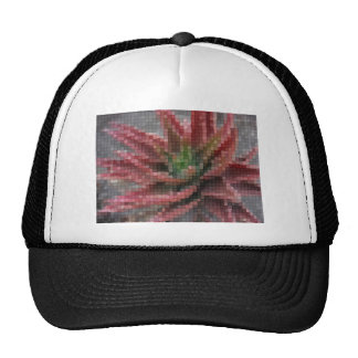 Mosaic Red-Green Aloe 5 Hat