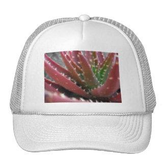 Mosaic Red-Green Aloe Hats
