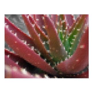 Mosaic Red-Green Aloe Postcard