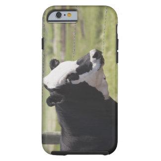 Moseleigh, Alberta, Canada Tough iPhone 6 Case