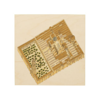 Mosque of Cordoba Spain. Aerial view Wood Wall Art