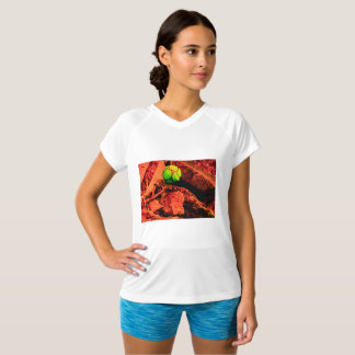 mosquito explorer T-Shirt