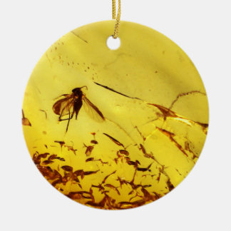 Mosquito fly inside amber christmas ornament