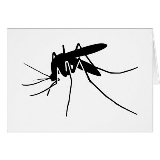 Mosquito Side View Greeting Card