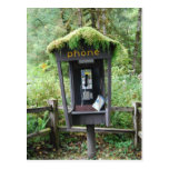 Moss covered phone booth post cards