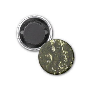 Moss covered Trunk Fridge Magnets