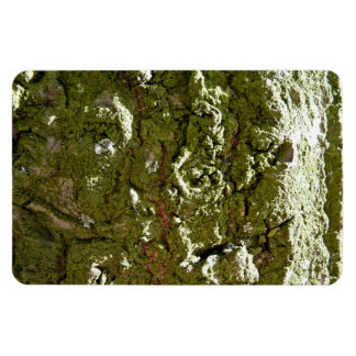 Moss covered Trunk Rectangle Magnet
