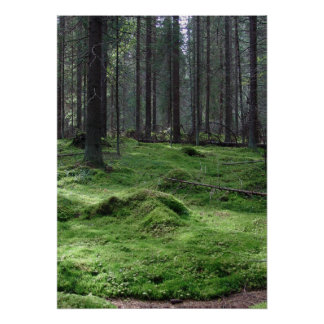 Moss Forest Print
