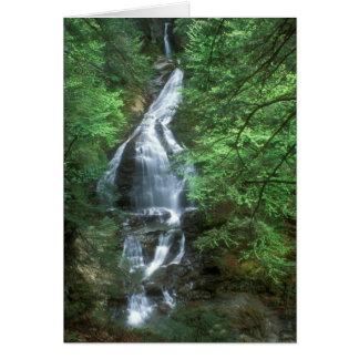 Moss Glen Falls Stowe Vermont Card