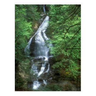Moss Glen Falls Stowe Vermont Postcards