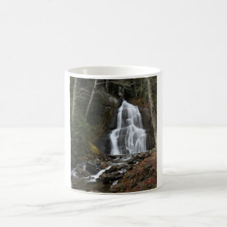 Moss Glenn Falls-3 Mug