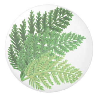 Moss Green Ferns Ceramic Knob