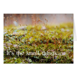"""Moss Greeting Card - """"It's the small things..."""""""