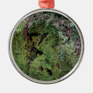 Moss on fallen redwood christmas ornament
