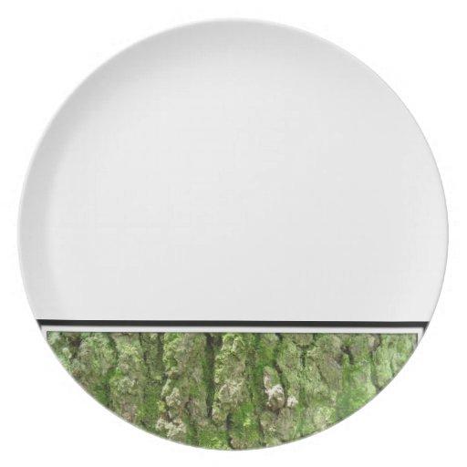 Moss Plate 3