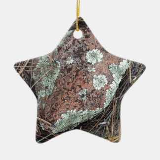 Moss rock lichen christmas ornament