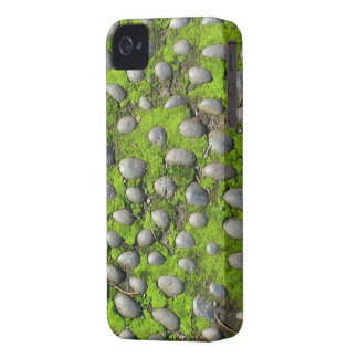 Moss & Stones Blackberry Bold case