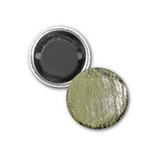 Moss Wood Texture Refrigerator Magnet