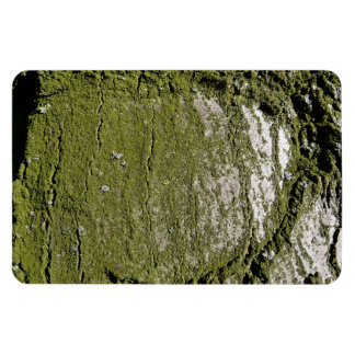 Moss Wood Texture Rectangle Magnets