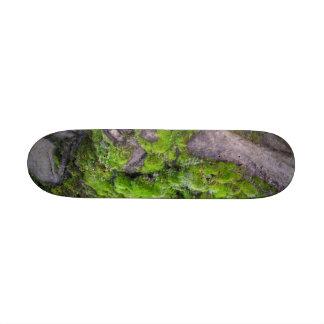 Mossdeck Custom Skate Board