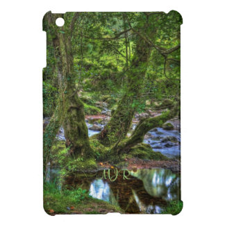 Mossy Creek Trees and Pool at Spitchwick iPad Mini Cover