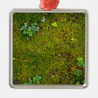 Mossy Green Silver-Colored Square Decoration