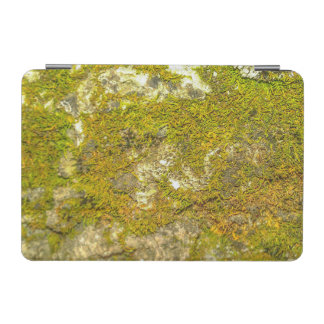 Mossy IPad Smart Cover