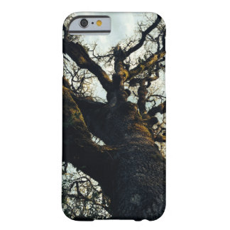 Mossy old tree barely there iPhone 6 case