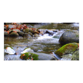 Mossy River Stones Photocard Personalized Photo Card