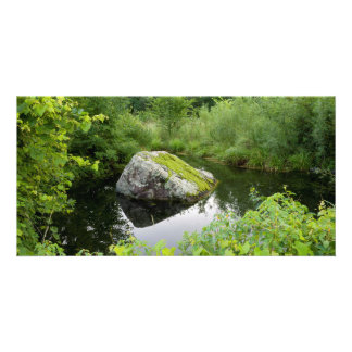 Mossy Rock in Pond Personalised Photo Card