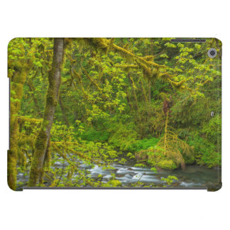 Mossy Rocks And Trees Line Eagle Creek Case For iPad Air