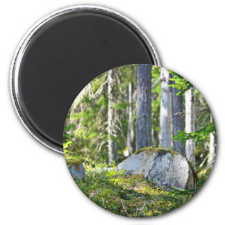 Mossy Rocks And Trees 6 Cm Round Magnet