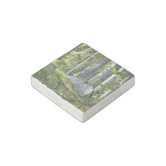 Mossy Rocks And Trees Stone Magnet