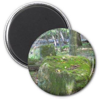 Mossy Rocks on Bank 6 Cm Round Magnet