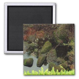 Mossy Rocks, Yosemite Square Magnet