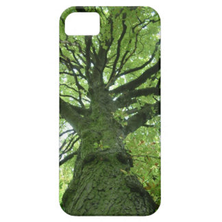 Mossy Tree iPhone 5 Cover