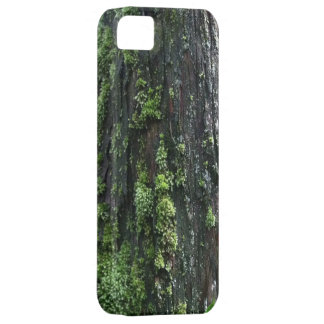 Mossy Trunk iPhone 5 Covers