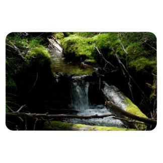 Mossy Waterfall Rectangular Photo Magnet