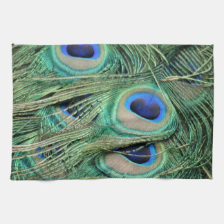 Most Beautiful Peacock Feathers Bold Blue Eyes Tea Towel